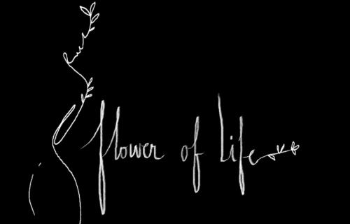 Flower of life documentaire pilule histoire pilule